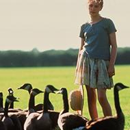 buy online 4fb22 1aa93 Amy und die Wildgänse   Kinderfilm des Monats   Aktuell